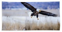 Beach Towel featuring the photograph Bald Eagle Landing by Bryan Carter