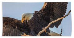 Bald Eagle Landing Beach Sheet