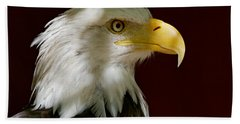 Bald Eagle - Majestic Portrait Beach Towel
