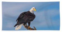 Bald Eagle Majesty Beach Towel