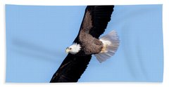 Bald Eagle Overhead  Beach Sheet by Ricky L Jones