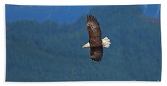 Beach Sheet featuring the photograph Bald Eagle Soaring  by Sharon Talson