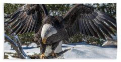 Bald Eagle Spread Beach Towel