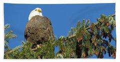 Bald Eagle Sunbathing Beach Sheet