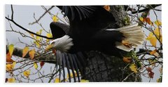 Beach Towel featuring the photograph Bald Eagle Takes Flight by Sue Harper