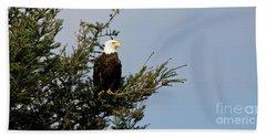 Bald Eagle - Taking A Break Beach Sheet