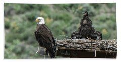Bald Eaglet Cooling Off On A Hot Spring Day Beach Towel