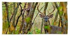 Bambi's Father Beach Sheet