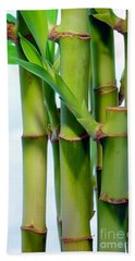 Bamboo And Sky Beach Towel