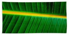 Banana Plant Leaf Beach Sheet