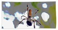Banana Spider Lunch Time 1 Beach Towel