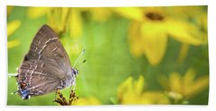 Banded Hairstreak On Coreopsis Beach Towel