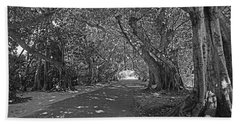 Banyan Street 2 Beach Sheet by HH Photography of Florida