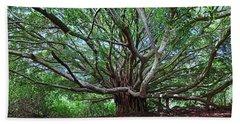 Banyan Tree Beach Sheet by James Roemmling
