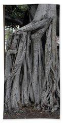 Banyan Tree, Maui Beach Towel