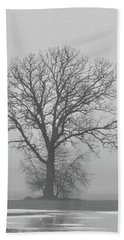 Bare Tree In Fog Beach Sheet