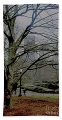 Bare Tree On Walking Path Beach Sheet by Sandy Moulder