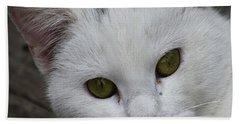 Barn Cat Beach Sheet