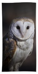 Beach Towel featuring the photograph Barn Owl by Andrea Silies