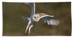 Barn Owl Cornering Beach Towel