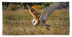 Barn Owl Flight 6 Beach Sheet
