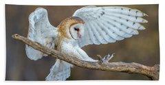 Barn Owl In Flight Beach Towel