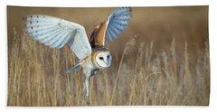 Barn Owl In Grass Beach Towel