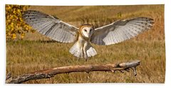 Barn Owl Landing Beach Towel