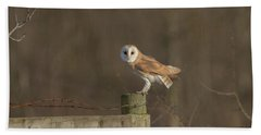 Barn Owl On Fence Beach Towel