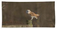 Barn Owl On Fence Beach Sheet