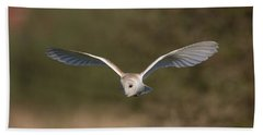 Barn Owl Quartering Beach Towel