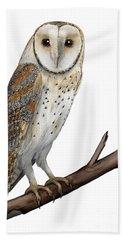 Barn Owl Screech Owl Tyto Alba - Effraie Des Clochers- Lechuza Comun- Tornuggla - Nationalpark Eifel Beach Towel