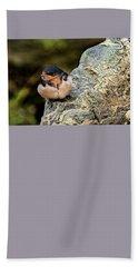 Tree Swallow Beach Sheet