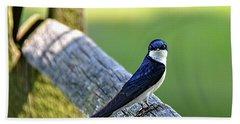Barn Swallow Looking Angry Beach Towel