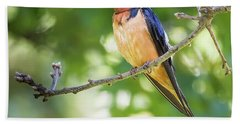 Barn Swallow  Beach Towel by Ricky L Jones