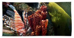 Barnacle Buddies Beach Towel by Bill Pevlor