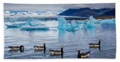 Barnacle Geese In Glacier Lagoon In Iceland Beach Towel