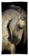 Baroque Horse Portrait Beach Towel