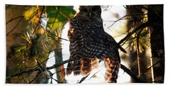 Barred Owl At Sunrise Beach Towel