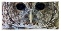 Barred Owl Closeup Beach Towel