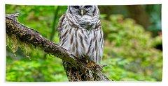 Barred Owl Beach Sheet