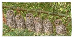 Barred Owlets Nursery Beach Sheet