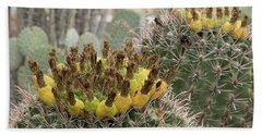 Barrel Cactus Closeup Beach Towel by Anne Rodkin