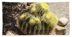 Barrel Of Cactus Needles Beach Sheet