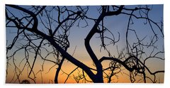 Beach Towel featuring the photograph Barren Tree At Sunset by Lori Seaman