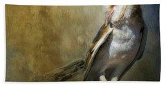 Bashful Barn Owl Beach Sheet