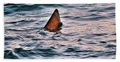 Basking Shark In July Beach Towel