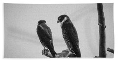 Bat Falcon In Black And White Beach Sheet