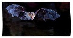 Bat Flying Over Pond Beach Towel