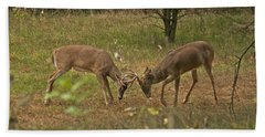Battling Whitetails 0102 Beach Towel